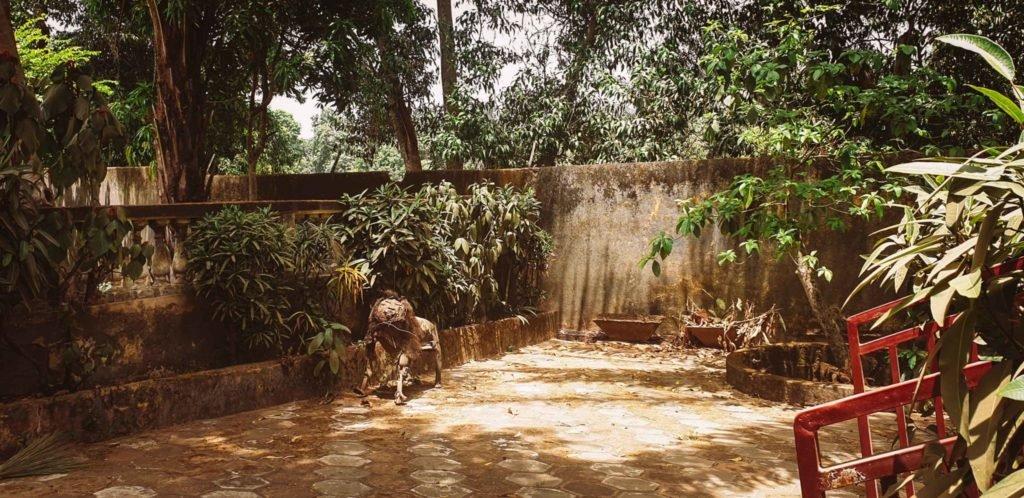 Maison d'hôte à Kindia 2